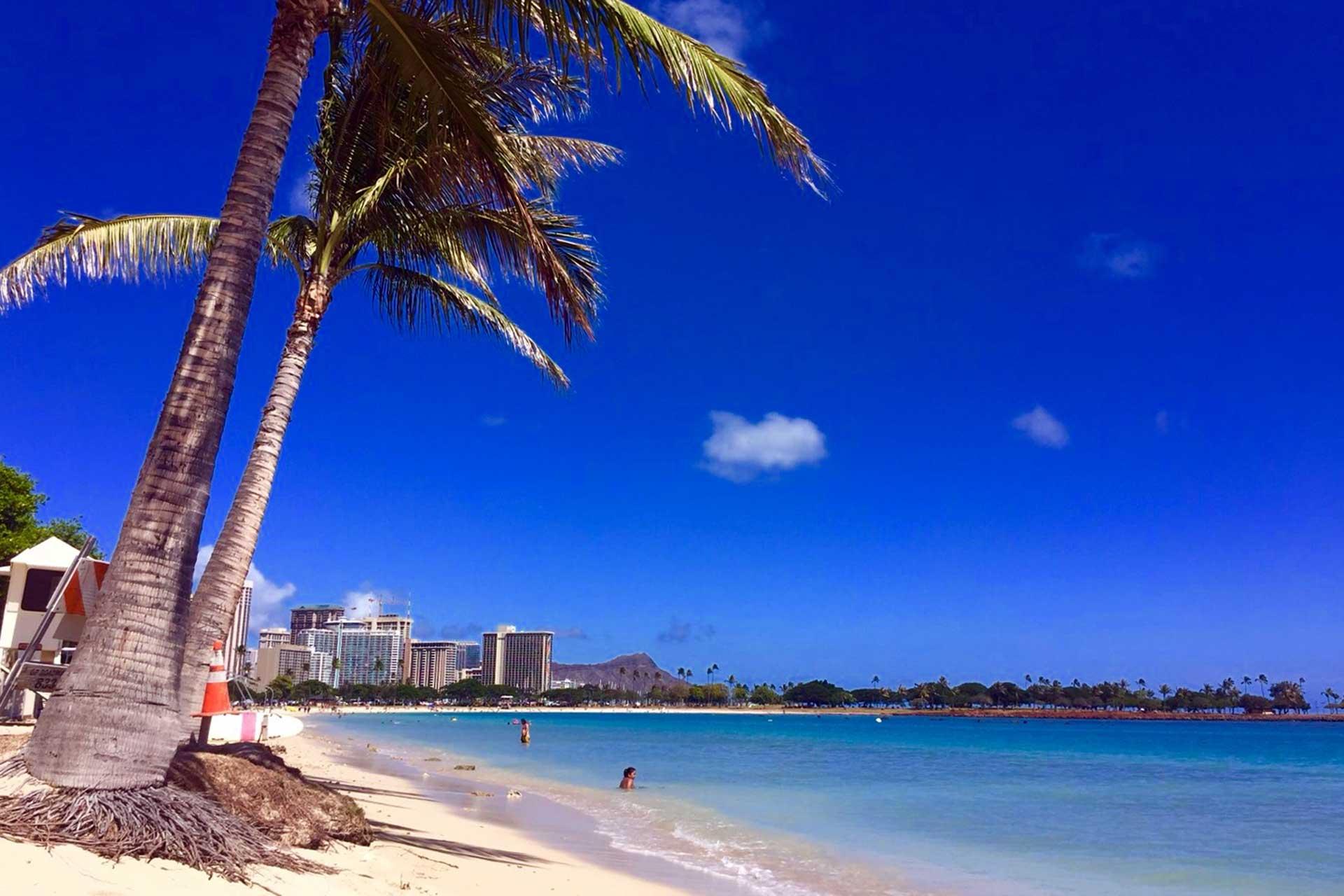 ハワイプライベート貸切チャーターツアー